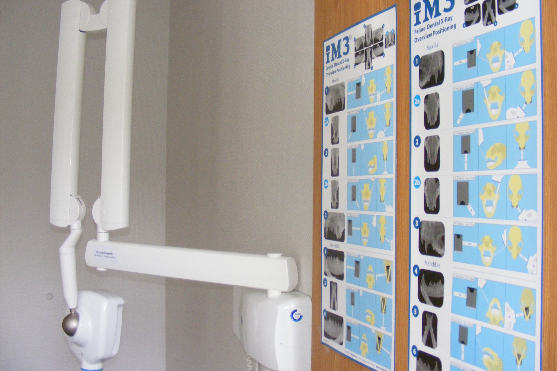 Dentalröntgen Website